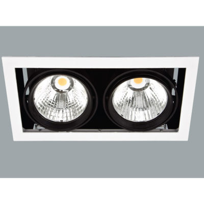 A black double led downlight with grey background.