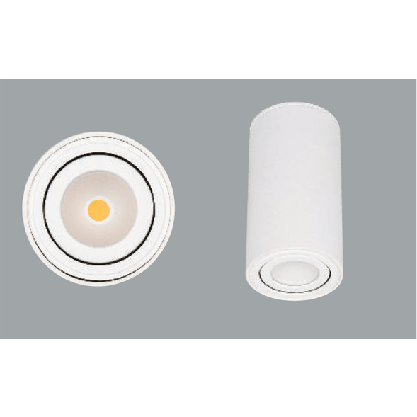 White surface mounted ceiling light on a grey background