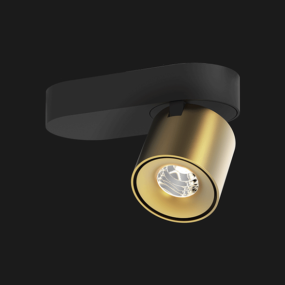 Black and gold base organic ceiling light on a black background