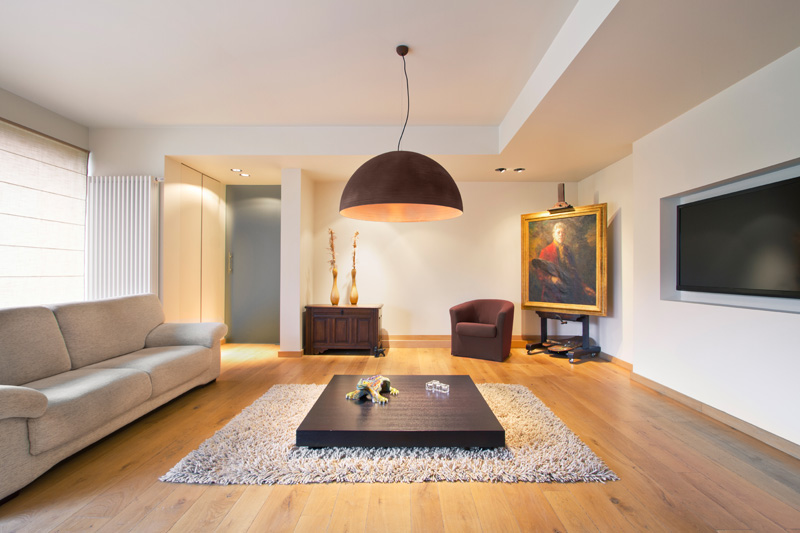 A modern living room with a dome pendant light.