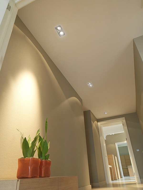 A design hallway with plants and led downlights